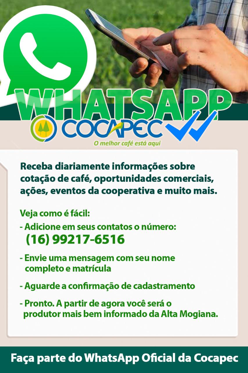 Cadastro Whatsapp